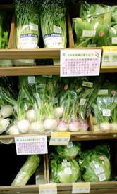 野菜正面から.jpg
